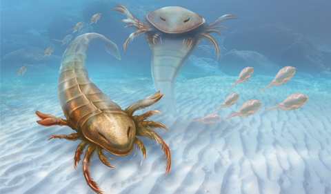 illustration of Eurypterids