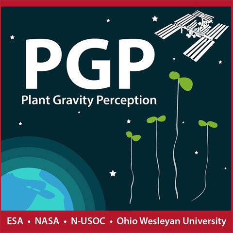 PGP: Plant Gravity Perception graphic, showing International Space Station orbiting Earch and seedlings, a project of ESA, NASA, N-USOC and Ohio Wesleyan University