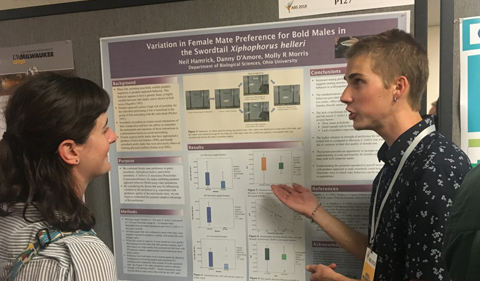 Neil Hamrick talks about his poster at conference.