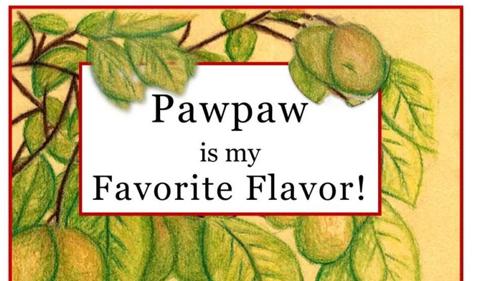 OHIO Student Publishes Children's Pawpaw Book