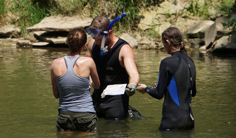 Three students hip-deep in river, the searching for hellbenders.