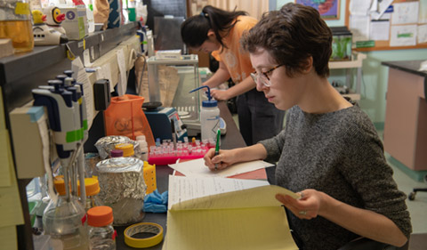 Ava Heller works on documentation in the lab. Photo by Ben Siegel