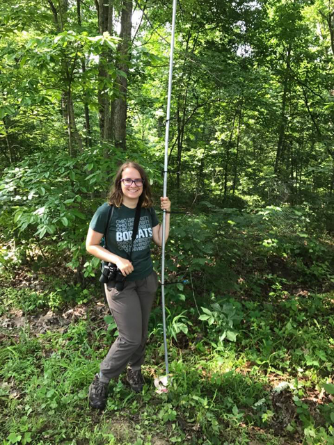 Madeline Sudnick, third-year Honors Tutorial College student, setting up a mist net to catch adult birds.