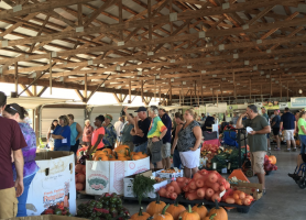 OHIO to Begin Purchasing from Chesterhill Produce Auction, OHIO Student Farm