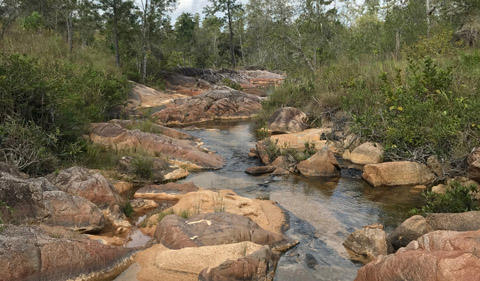 Streams in the mountain with no human impact were one sample site.