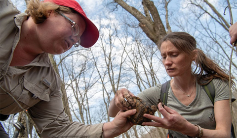 Marcel Weigand (left) and BIOS undergraduate Christine Hanson (right) handling a Box Turtle during telemetry surveys (photo: Ben Siegel).