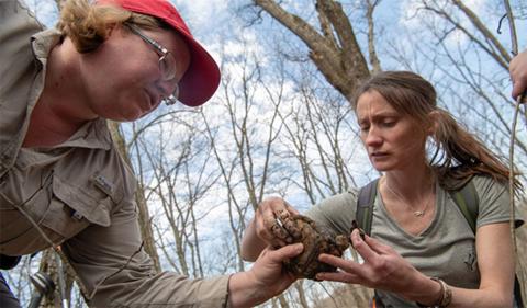Marcel Weigand (left) and BIOS undergraduate Christine Hanson (right) handling a Box Turtle during telemetry surveys (photo: Ben Siegel).