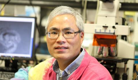 Zhihua Hua, portrait