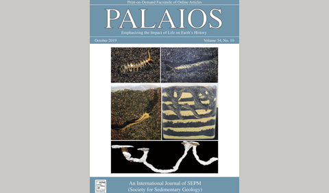 image of the October 2019 cover of PALAIOS
