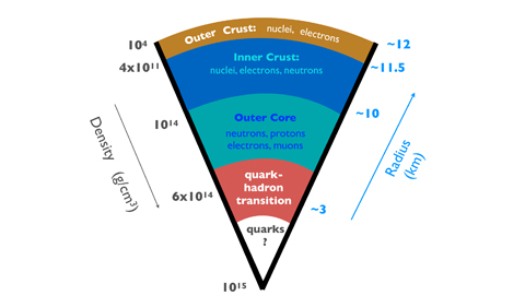 A pie chart of the internal structure and composition of a neutron star. Possible phase transitions to states of matter containing nuclei, nucleons, and other exotic states such as hyperons, meson condensates, and quarks as the density increases toward the core are as shown. The corresponding distances are as indicated on the right.