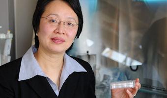 Dean Mei Wei