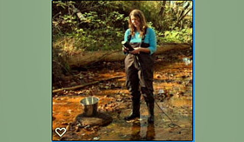 Michelle Shively, working in waders in a stream