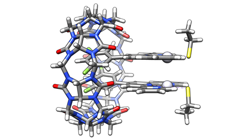Cucurbit[8]uril, a hollow pumpkin-shaped macrocycle, that secured a pair of Platinum-based molecules on top of each other. This can lead them to bind to any pair of sulfur-containing molecules.