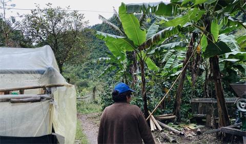 Visiting a Rio Intag coffee farm