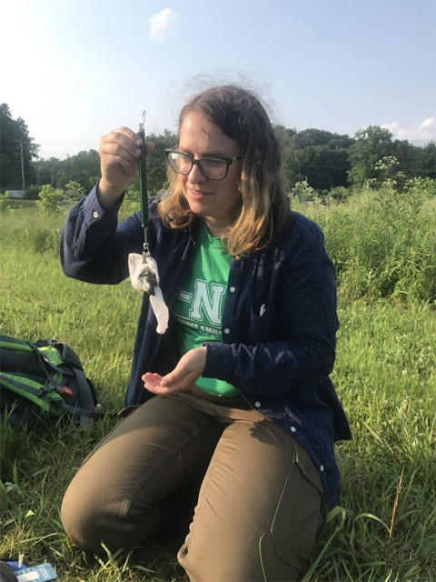 Undergraduate Honor's Tutorial College Student, Madeline Sudnick, weighs a nestling bird as part of her thesis research during the 2019 field season.