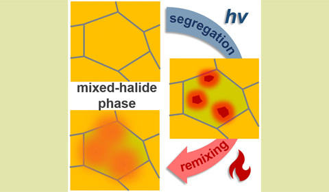The fast phase segregation and remixing of mixed halid lead perovskite is measured.