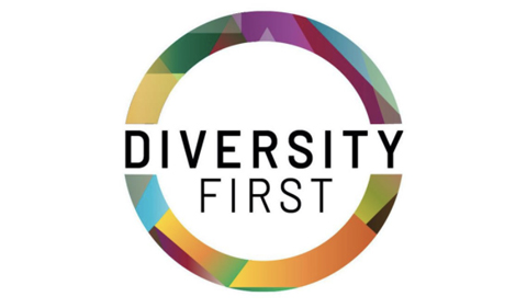 Divisity First logo