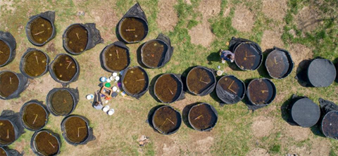 Aerial View of the Cattle tank Mesocsoms.