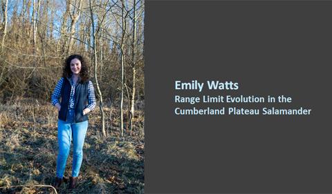 Emily Watts: Range limit evolution in the Cumberland Plateau Salamander
