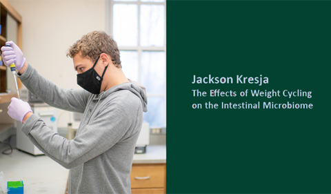 Jackson Krejsa: the efefects of weight cycling on the intestinal microbiome